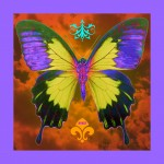 Psychedelic Butterfly Graphic By SisterFaceDesigns Hawaii