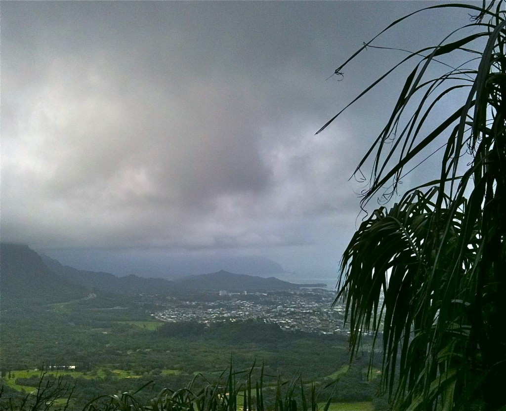 Windward Side, Oahu Hawaii From Pali